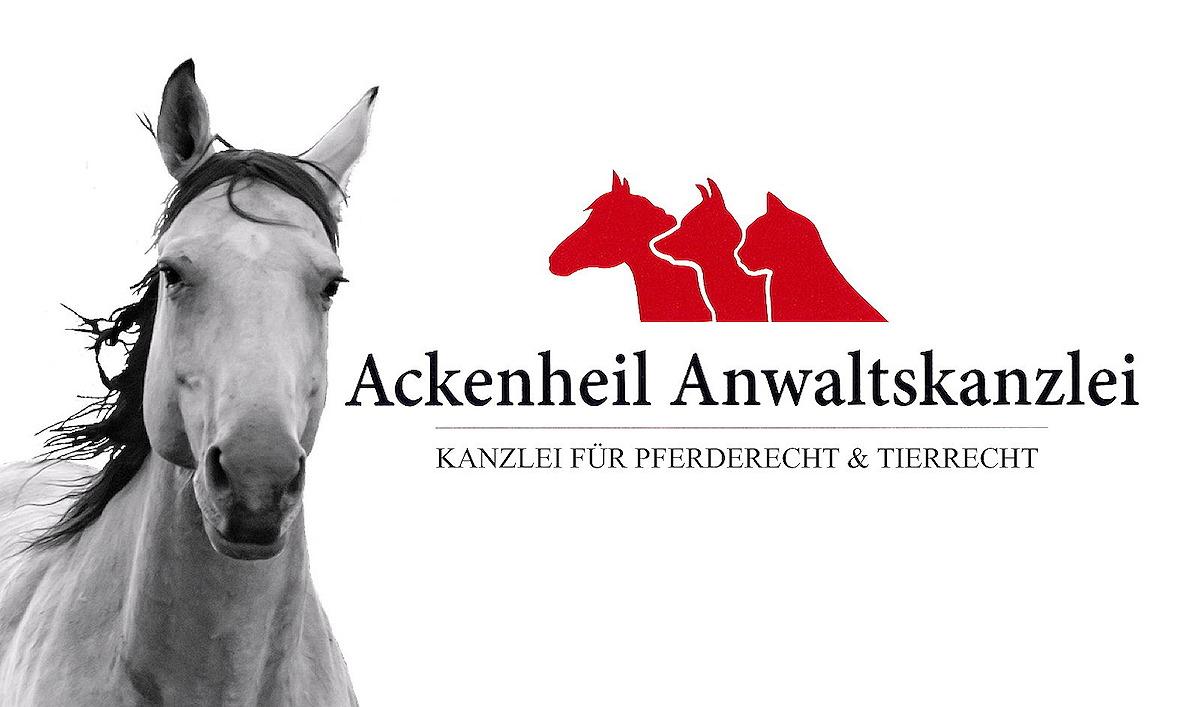 Kostenlose dating-sites für pferde