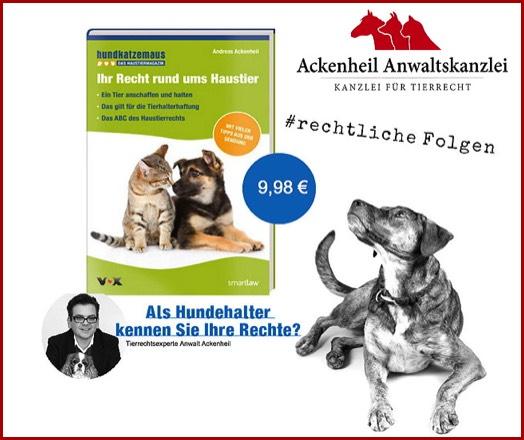 Tiere In Der Wohnung Tierrecht Tieranwalt Tierrechtsanwalt